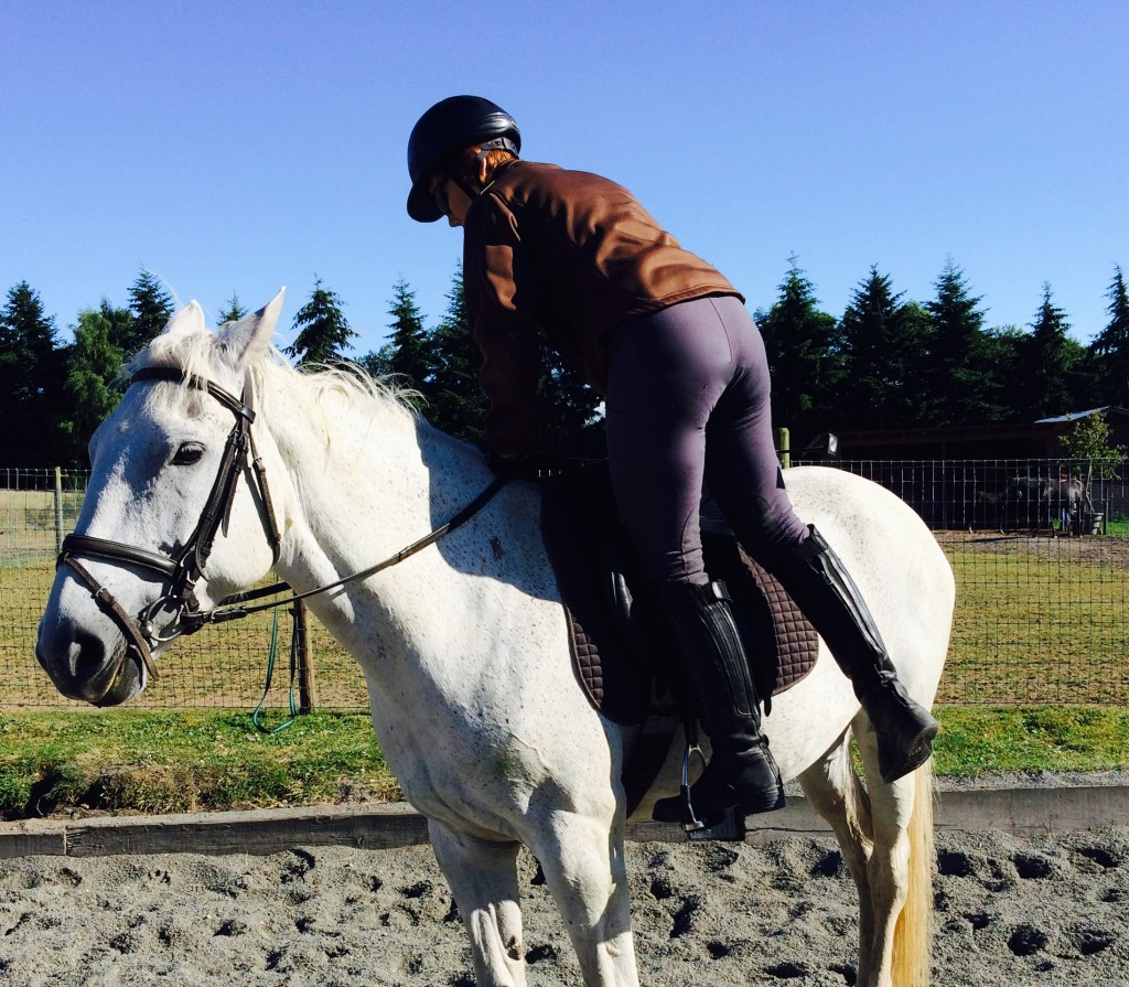 2014 - 07.17 - #13  Getting back into saddle-mounting